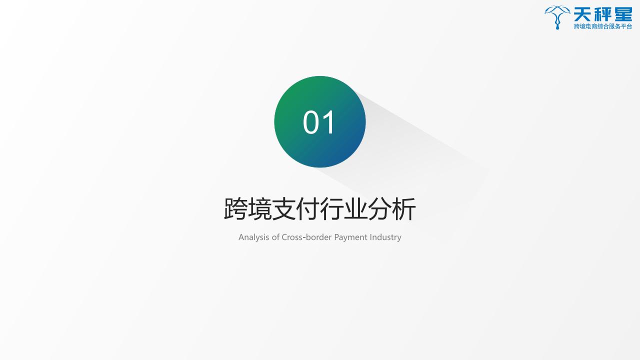 2019跨境支付白皮书png_Page3.png