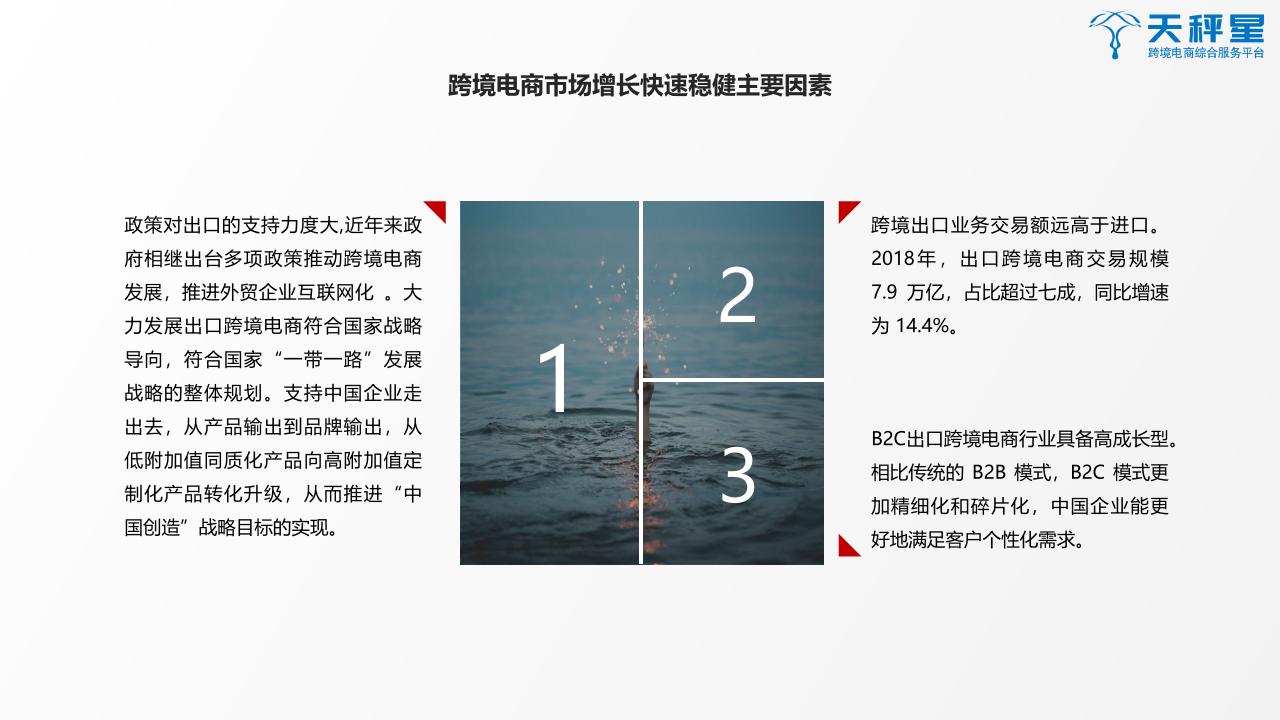 2019跨境支付白皮书png_Page20.png